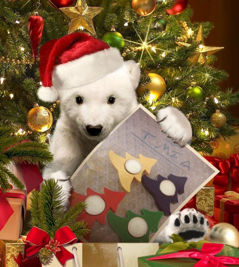 Idee regalo per i regali di natale for Regalo per cognata natale